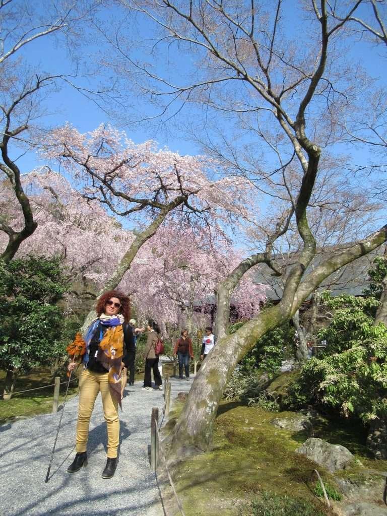 Jardín del templo de Tenryuji