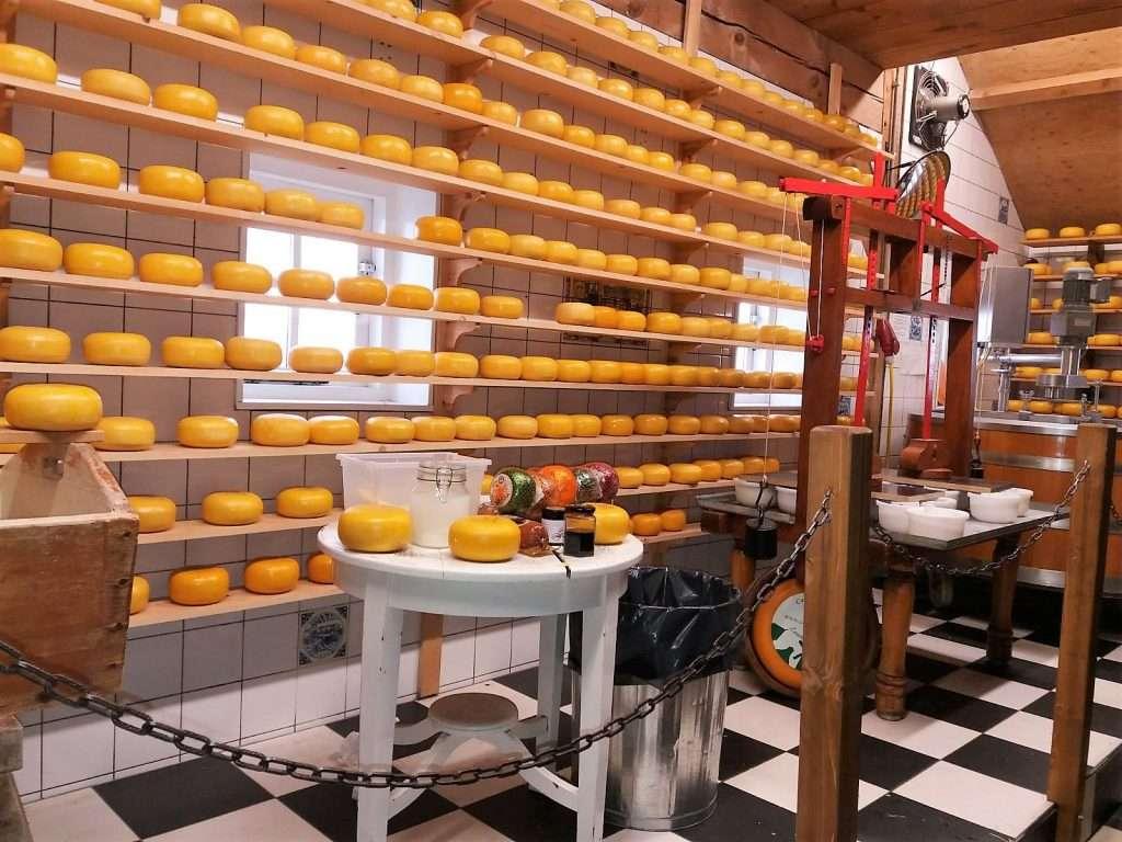 Fabrica de queso Gouda en Zaansche Schans.