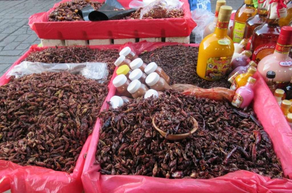 Chapulines en el mercado de Oaxaca