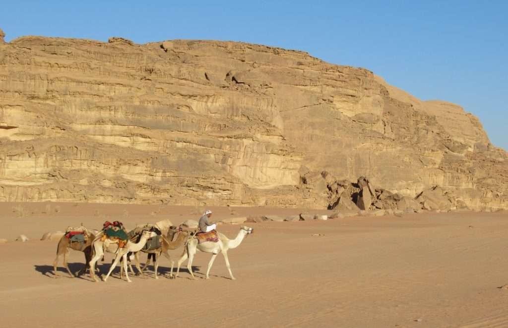 Wadi Rum, caravana de camellos